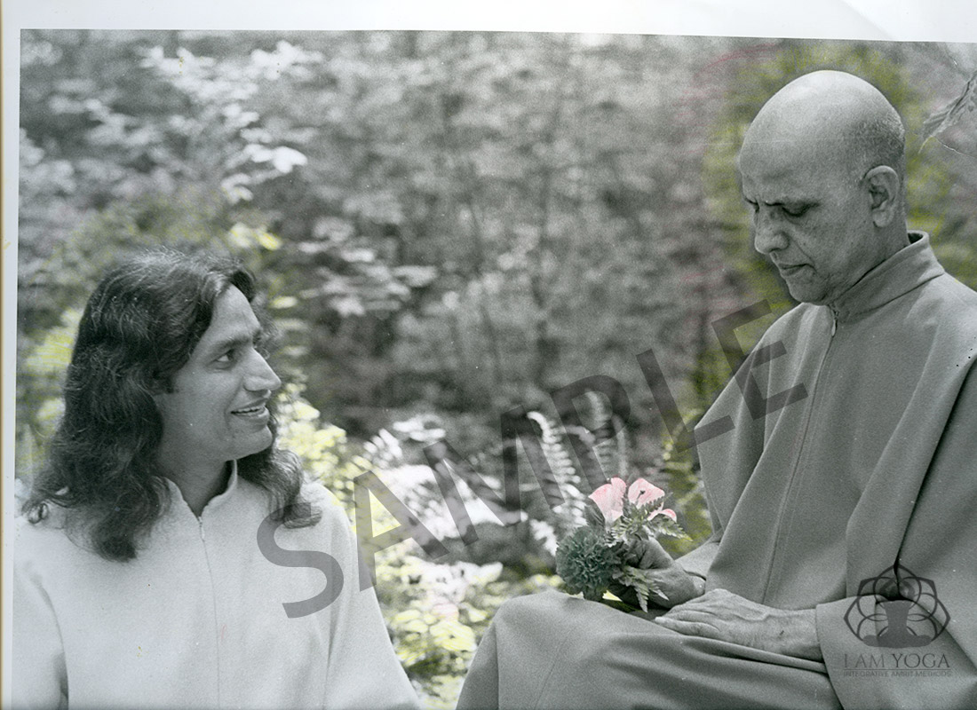 Yogi Amrit Desai and Swami Kripalu