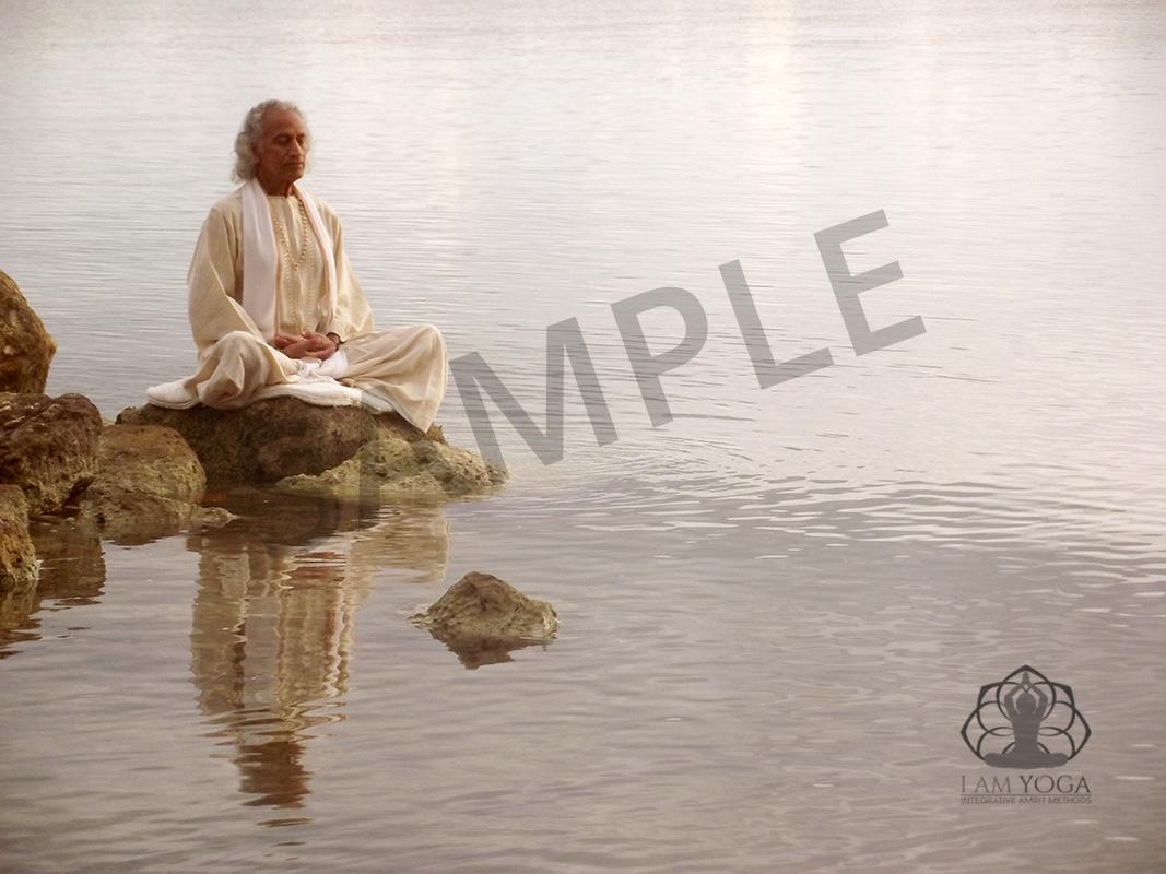 Gurudev # 4