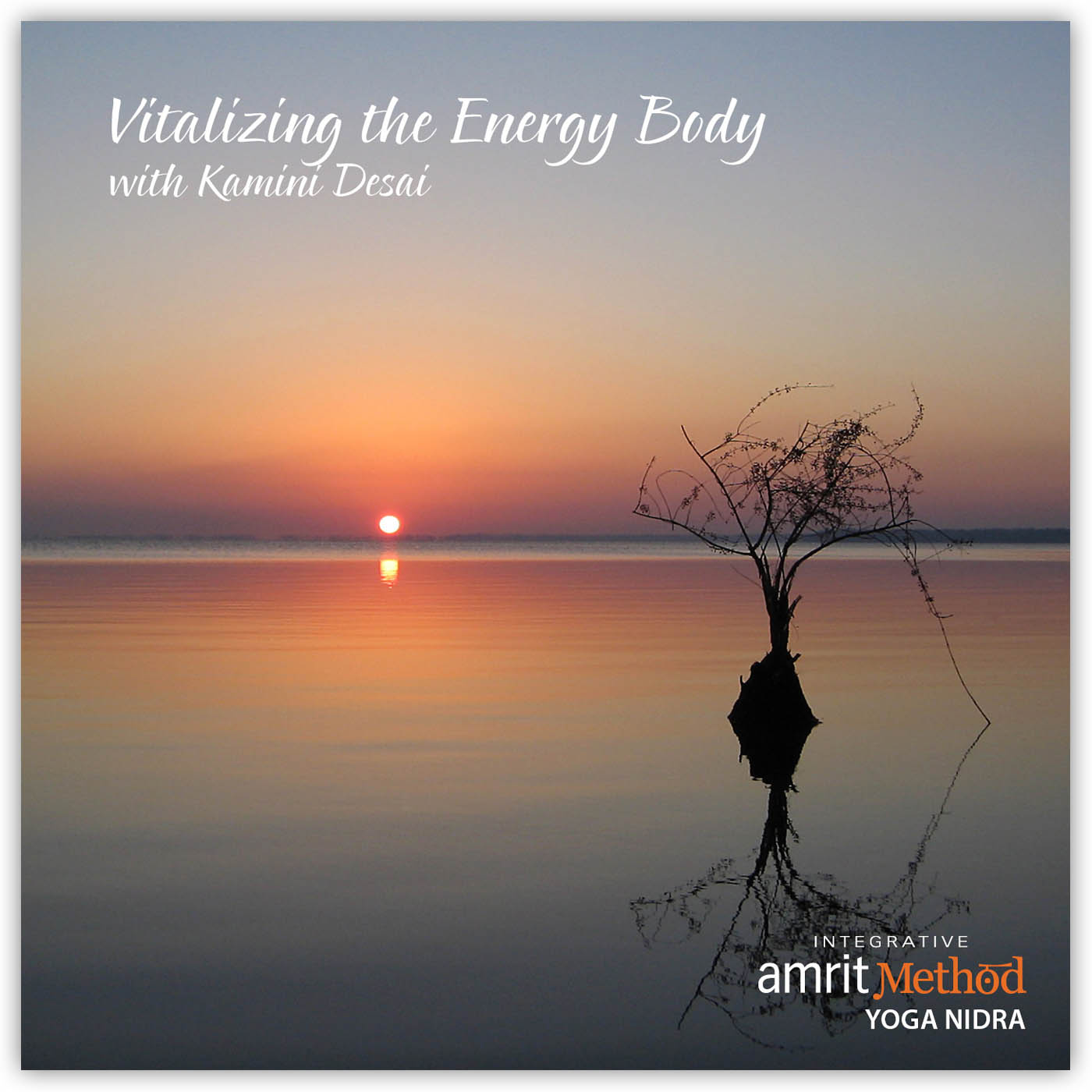 Yoga Nidra – Vitalizing the Energy Body with Kamini Desai, Ph.D.