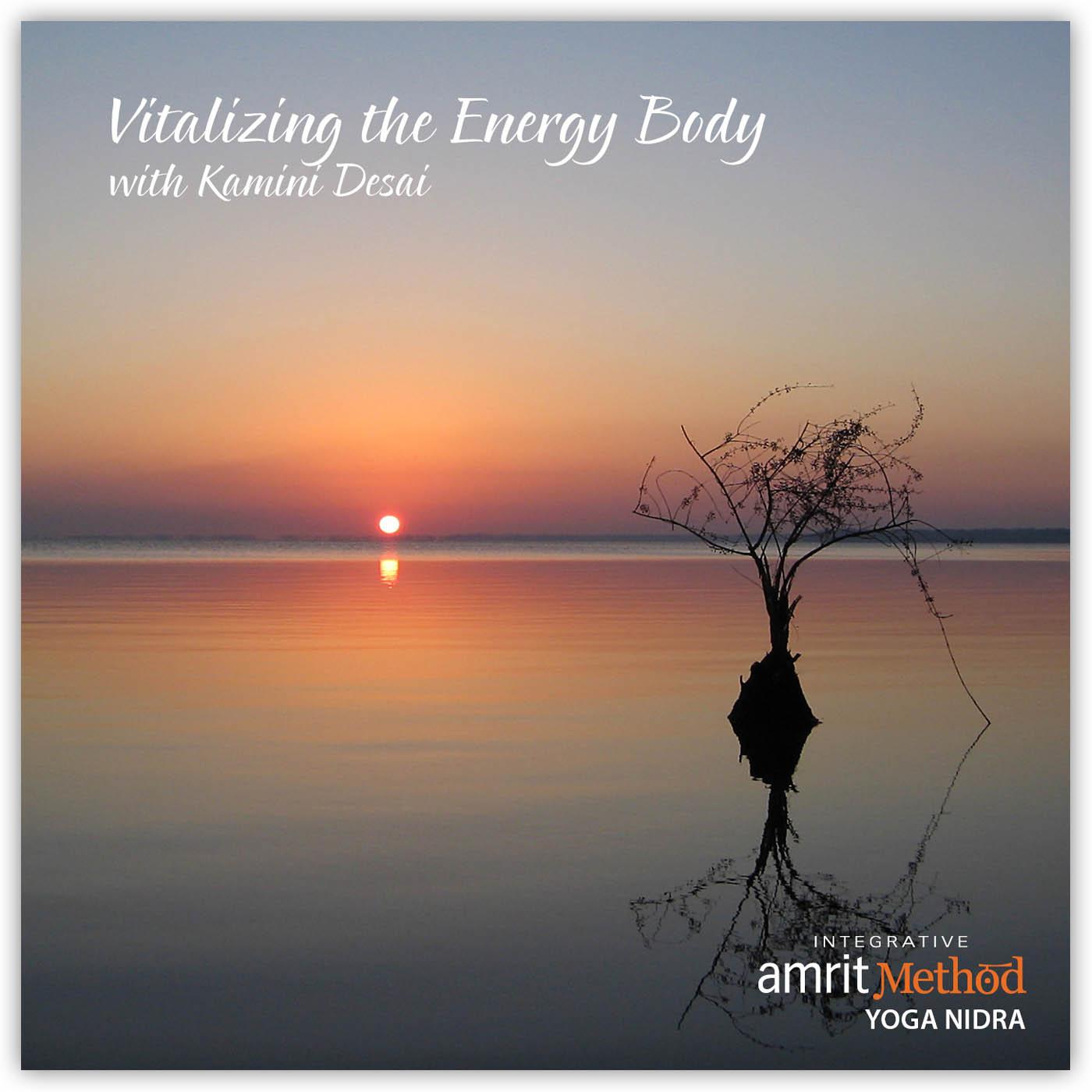 Yoga Nidra – Vitalizing the Energy Body with Kamini Desai, Ph.D.