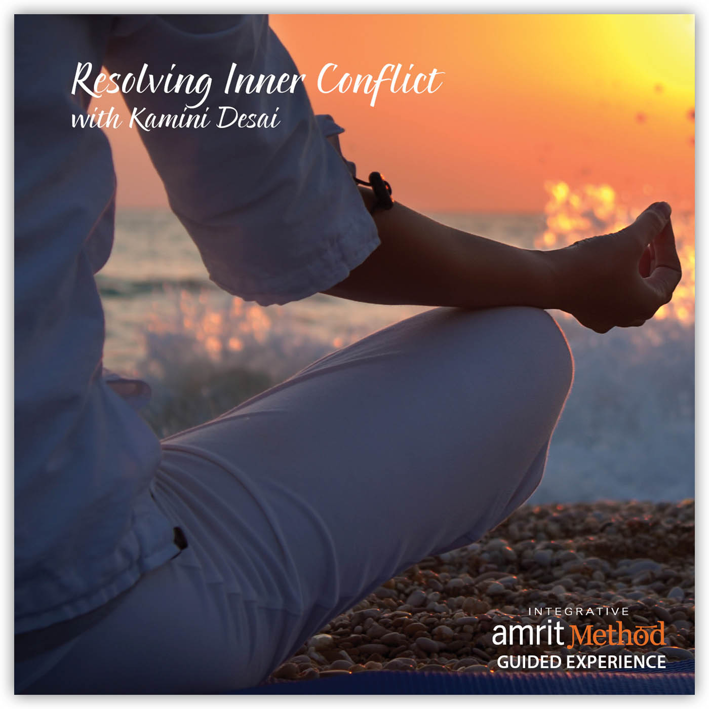 Lecture and Guided Experience – Resolving Inner Conflict with Kamini Desai PhD